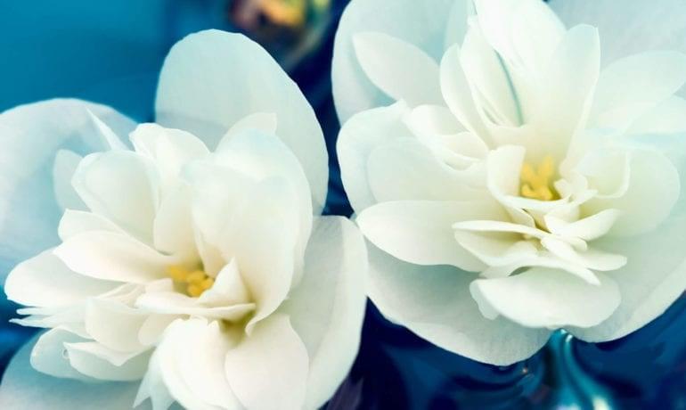 Isabelle Adjani a retrouvé la légèreté au sens propre et figuré